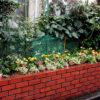 高円寺の美容室の花壇