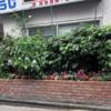 高円寺駅近美容室の花壇